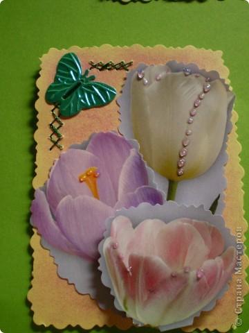Девочки я так люблю цветы, и вот  решила такую серию  сделать, права первого выбора за: Vitulichka,   Ларисочка,   Улик и Лучик,  radik.  фото 15
