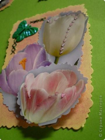 Девочки я так люблю цветы, и вот  решила такую серию  сделать, права первого выбора за: Vitulichka,   Ларисочка,   Улик и Лучик,  radik.  фото 16