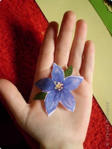 Девочки я так люблю цветы, и вот  решила такую серию  сделать, права первого выбора за: Vitulichka,   Ларисочка,   Улик и Лучик,  radik.  фото 17