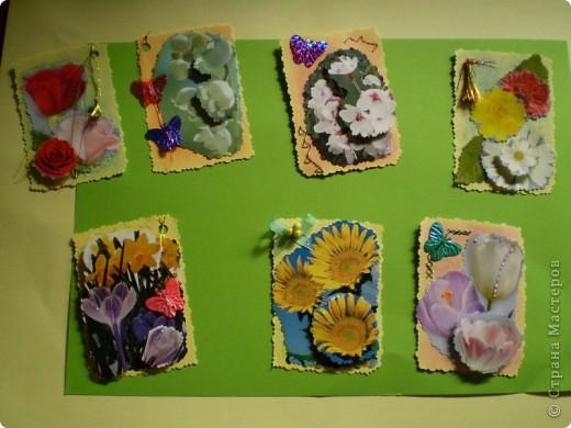 Девочки я так люблю цветы, и вот  решила такую серию  сделать, права первого выбора за: Vitulichka,   Ларисочка,   Улик и Лучик,  radik.  фото 1