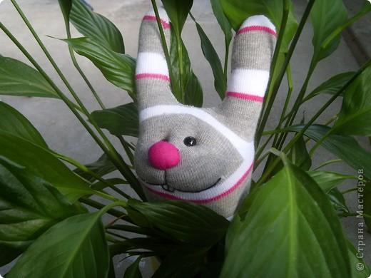 Обожаю этого зайца. Шьется очень просто, но зато посмотрите какой он классный!!! фото 1