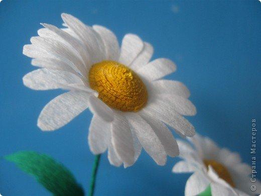Эксперементирую в изготовлении разных цветочков.На этот раз- ромашки. В планах сделать букет полевых цветов. фото 3