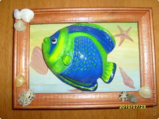 Еще пара рыбок. фото 2