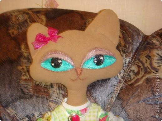 Кошка фото 2