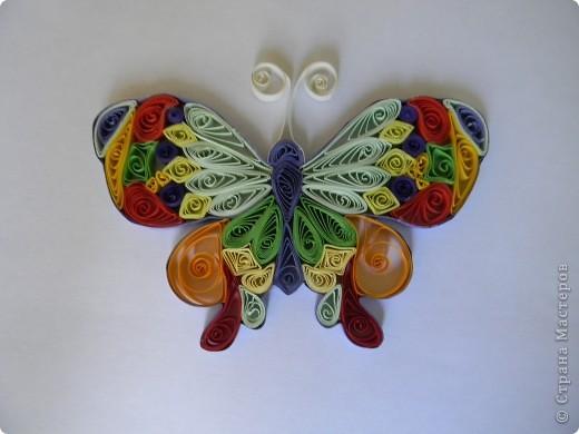 Моя первая бабочка.Я не думала что получится так красиво! фото 2