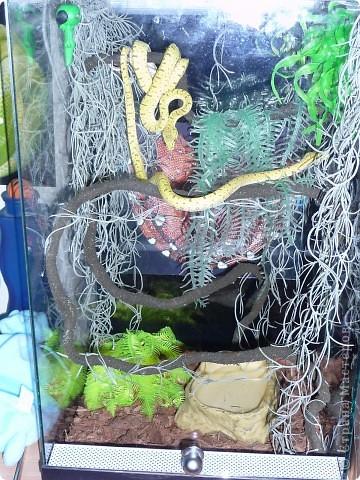 Змеиная фотосессия фото 8