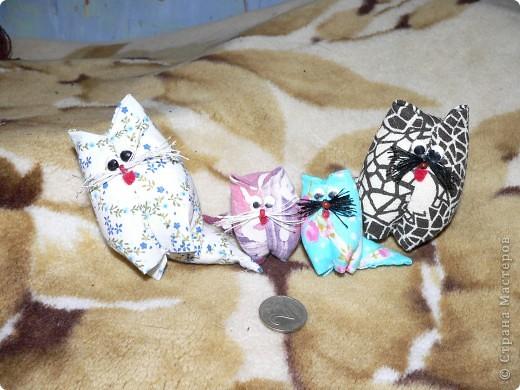 Семейка котов по мастер-классу Трофимовой Елены http://stranamasterov.ru/node/26424. Шьется один котик из квадрата ткани. Получаются набитые ватой пухлячки.  фото 1