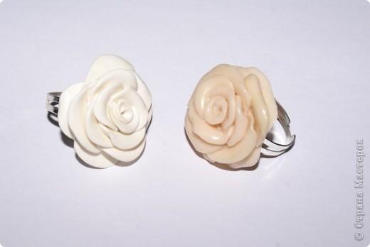 первые, еще совсем страшные розы фото 8
