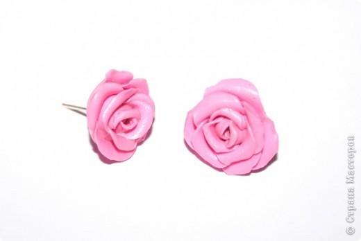 первые, еще совсем страшные розы фото 11