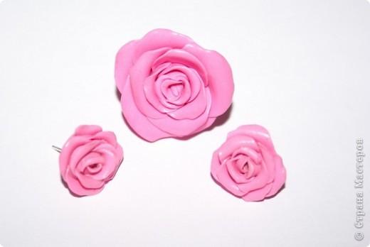 первые, еще совсем страшные розы фото 10