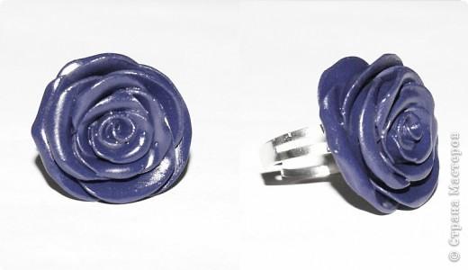 первые, еще совсем страшные розы фото 5