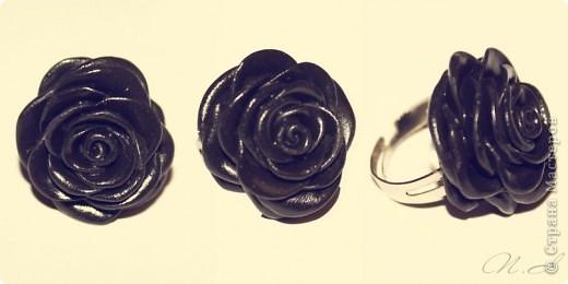 первые, еще совсем страшные розы фото 6