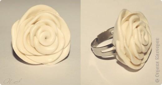 первые, еще совсем страшные розы фото 2