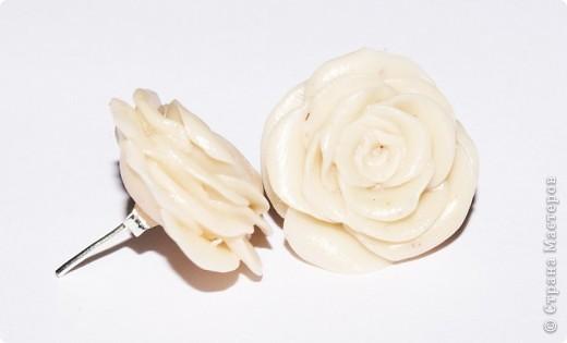 первые, еще совсем страшные розы фото 9