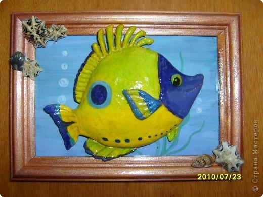 Еще пара рыбок. фото 1
