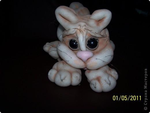 мои котик, на него аллергии нет! фото 3