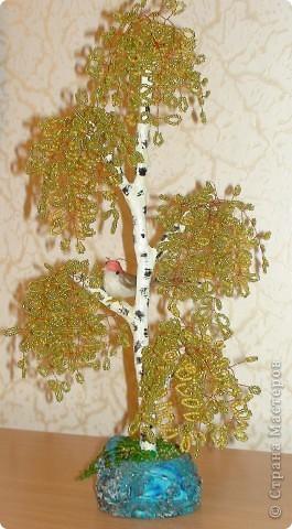 Мои деревья фото 2