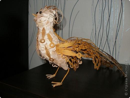 Жар-птица, склееная из кусочков бересты фото 1