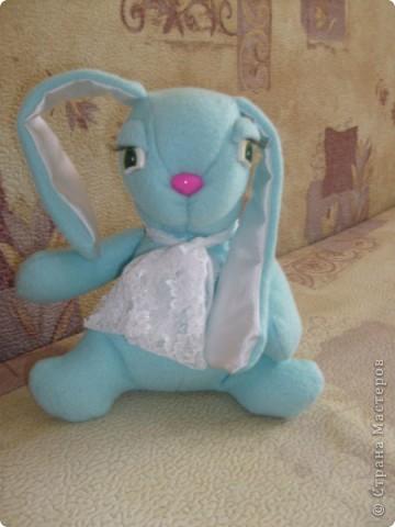 Кролик фото 1