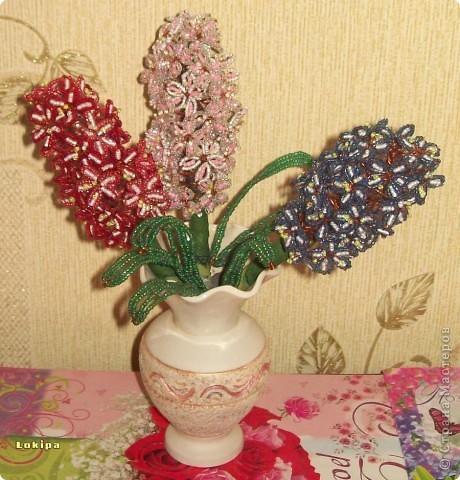 Свои гиацинты на подоконниках редко цветут, поэтому у меня есть альтернатива! фото 1