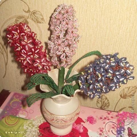 Свои гиацинты на подоконниках редко цветут, поэтому у меня есть альтернатива! фото 2