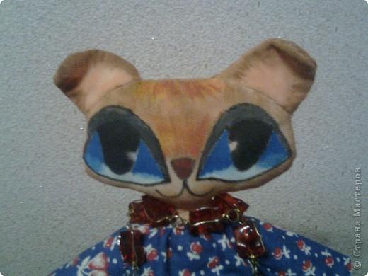 Чудо кошка фото 2