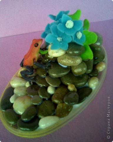 Лягушку умыкнула у сына из игрушек))) фото 2
