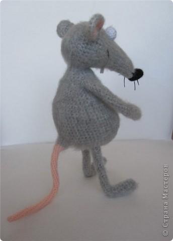 """В рамках игры """"Пришли мне игрушку"""" (на Сатилине) связались вот такие красавцы. Подобного котика я уже вязала, а вот крысик это мое новое творение! В лапках у крыса проволока. фото 4"""