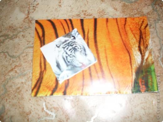АТС тигр закрыта фото 2