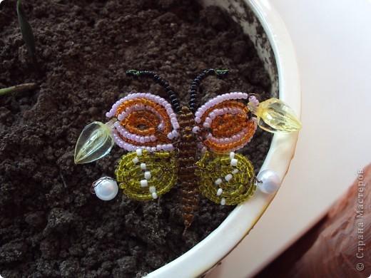 Вот таких насекомых, сплела моя золотуня-Дануся. фото 2
