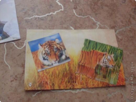 АТС тигр закрыта фото 3