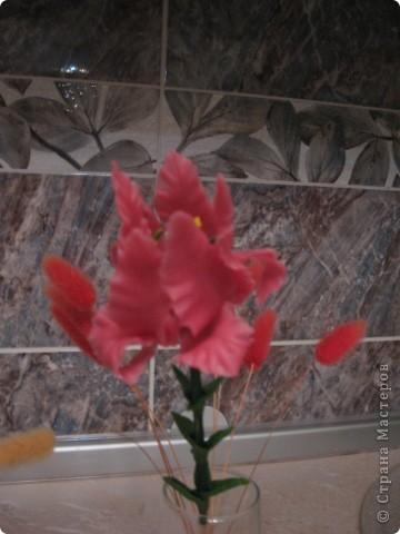 Аленький цветочек. ХФ. фото 1