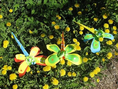 Голубой аэропланчик  Сел на желтый одуванчик. ... Имена стрекоз Александра(От Никиты), Цветочек (от Леры), Светлана (от Маши) фото 1