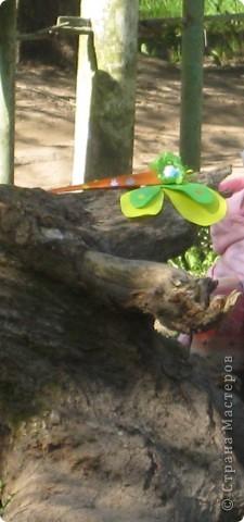Голубой аэропланчик  Сел на желтый одуванчик. ... Имена стрекоз Александра(От Никиты), Цветочек (от Леры), Светлана (от Маши) фото 3