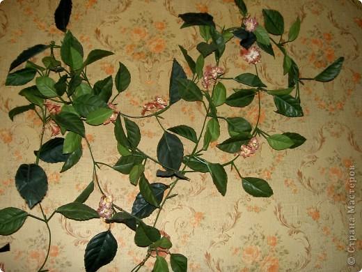 Была на стене просто зеленая веточка. Скушная такая. Слепила ей цветочки чтоб повеселей было. Мне понравилось фото 1