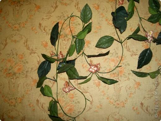 Была на стене просто зеленая веточка. Скушная такая. Слепила ей цветочки чтоб повеселей было. Мне понравилось фото 2