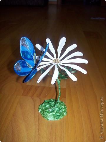 Ромашка с бабочкой.  фото 1