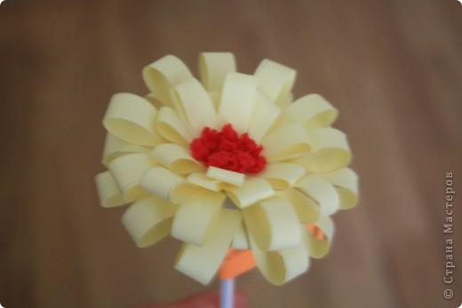 цветы  в подарок фото 4
