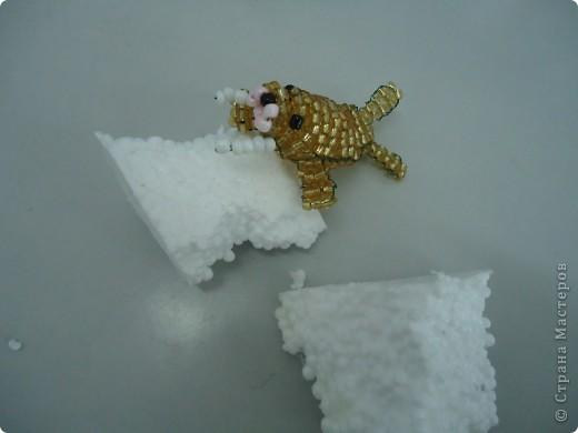 На льдине фото 4