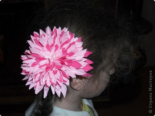 резинки для волос фото 2
