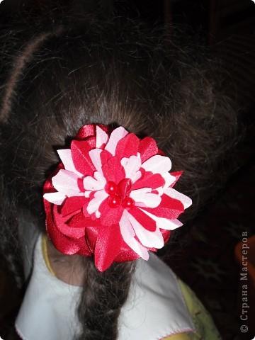 резинки для волос фото 3
