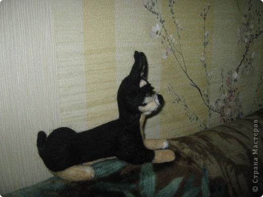 Это моя первая собачка. Зовут её Тина. Сделана в натуральную величину. фото 3
