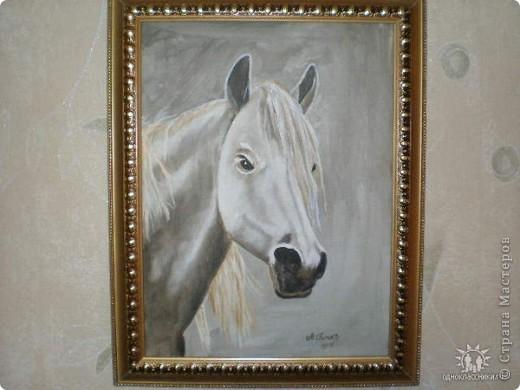 лошадь, холст, масло