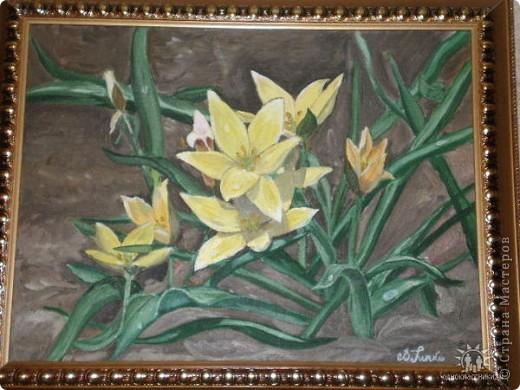 весенние цветы в ботаническом саду, холст, масло 30х40
