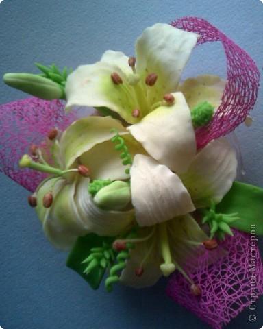 пристроила лилии фото 1