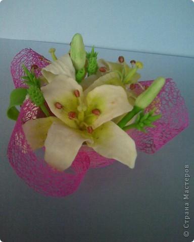 пристроила лилии фото 3