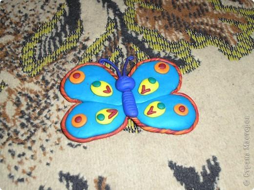 Мои змейки. фото 3