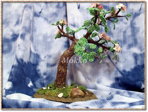 Яблоневый цвет фото 2