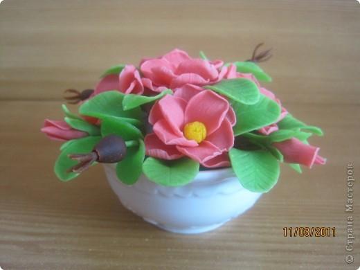 Прбовала лепить цветочки из детской массы для лепки фирмы SIWERHOV. Лепить понравилось, результат не очень. Какие-то пластмассовые цветочки получаются, не естественные что-ли... фото 3