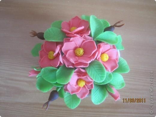 Прбовала лепить цветочки из детской массы для лепки фирмы SIWERHOV. Лепить понравилось, результат не очень. Какие-то пластмассовые цветочки получаются, не естественные что-ли... фото 1